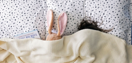 Letter of Recommendation: 'The Rabbit Who Wants to Fall Asleep'