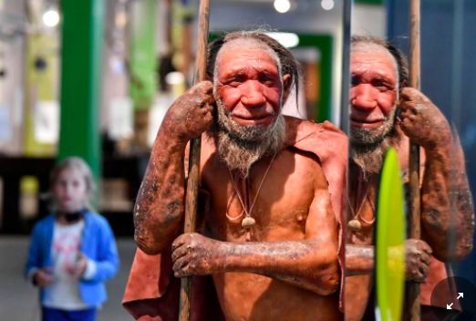 At Home With Our Ancient Cousins, the Neanderthals