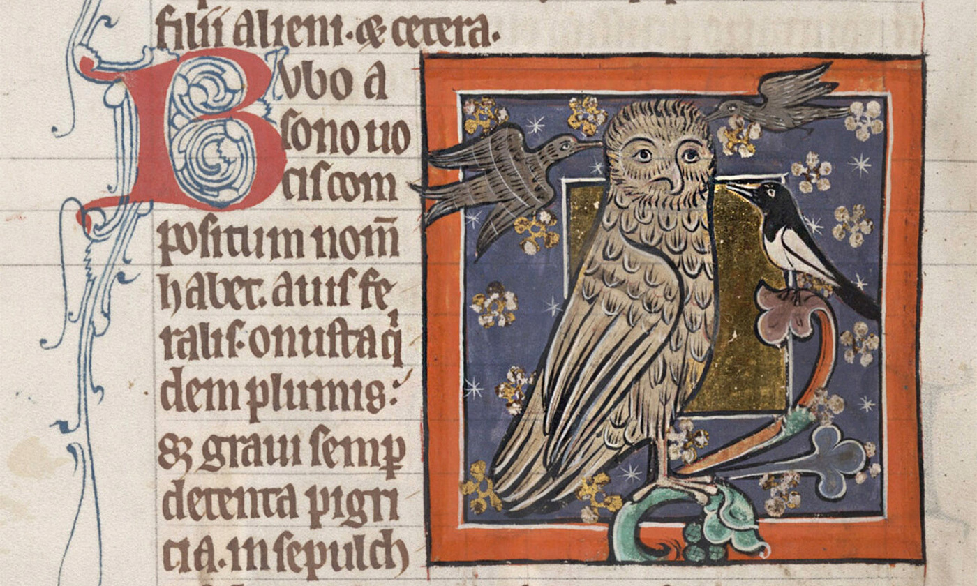 To see the antisemitism of medieval bestiaries, look for the owl