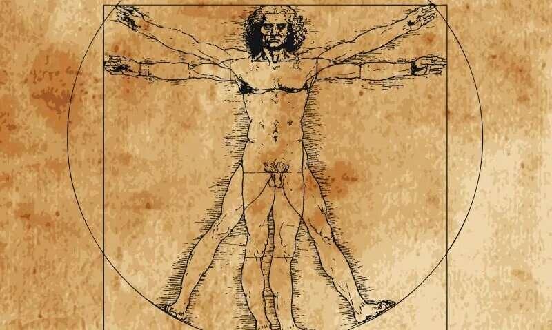 Leonardo's 'Vitruvian Man' ideal isn't far off modern measures